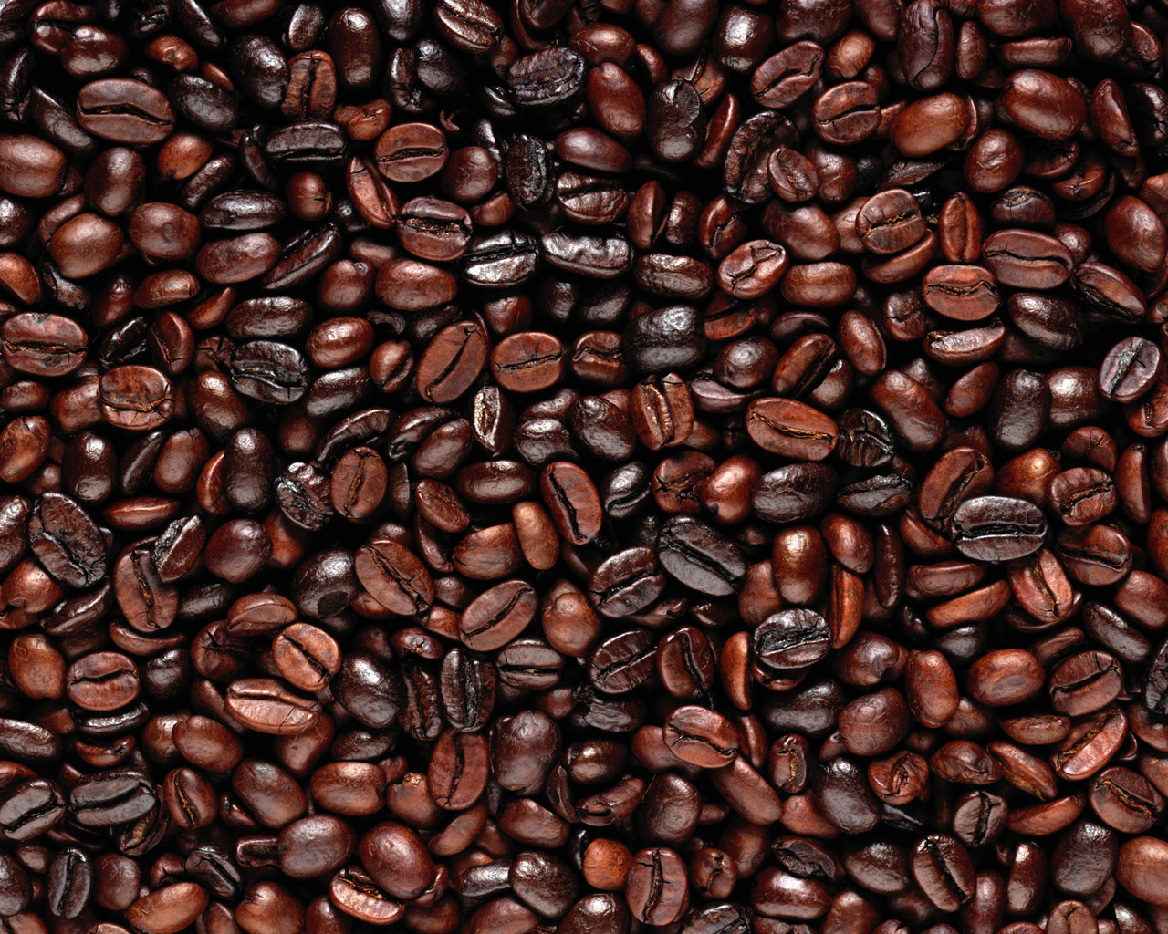 coffee-bean-extract1